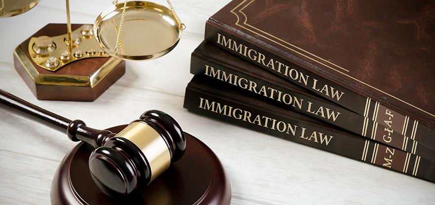 移民罪名.png